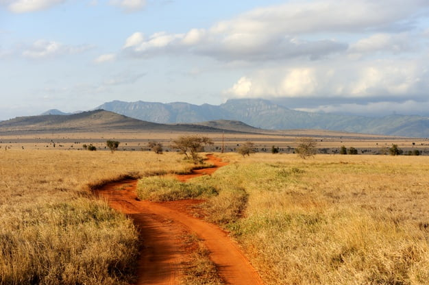 What to Do in Tanzania
