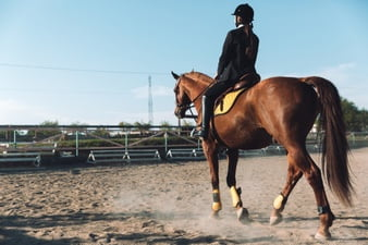 Ways Jockeys Make Their Horses Run Faster
