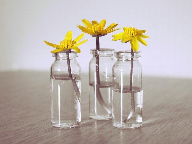 1. Glass Jar